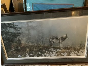 Collected In Colorado | Auction Ninja